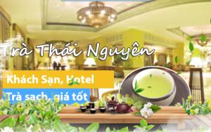 Trà Thái Nguyên Ngon Rẻ Cho Nhà Hàng,Khách Sạn,Quán Cafe
